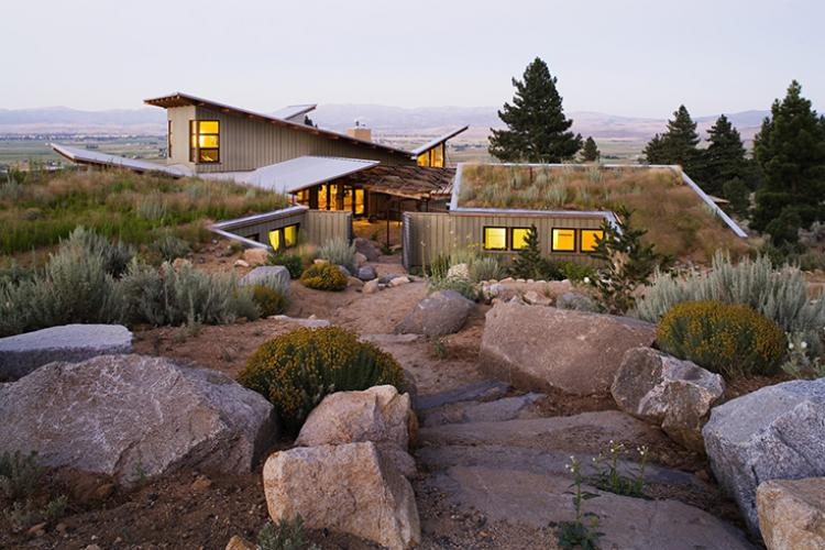 eastern sierra living roof