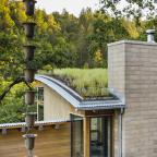 Watershed Straw Bale Residence green roof